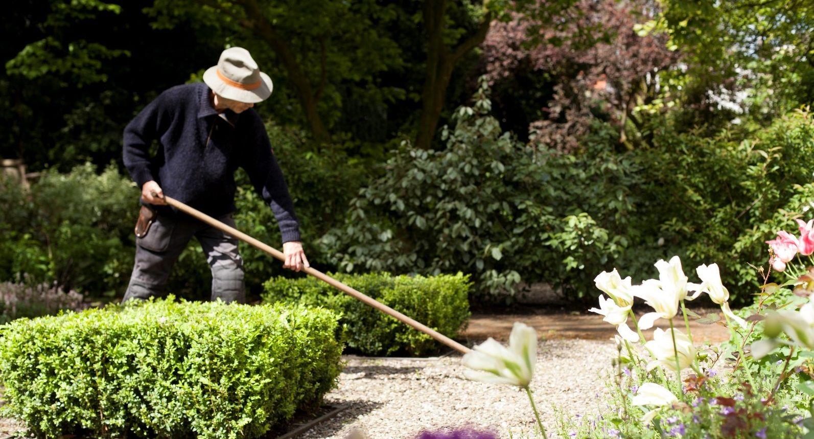 De Bary Garden innercity oasis